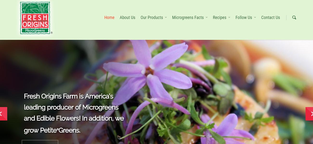 Fresh Origins - Design Marketing Firm Phoenix AZ